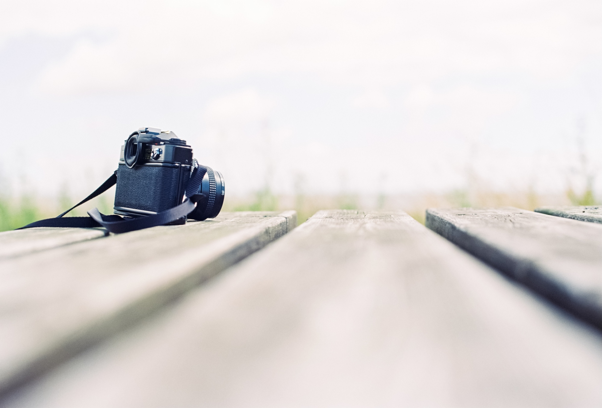 Canon AE-1 Program - Kodak Ektar 100